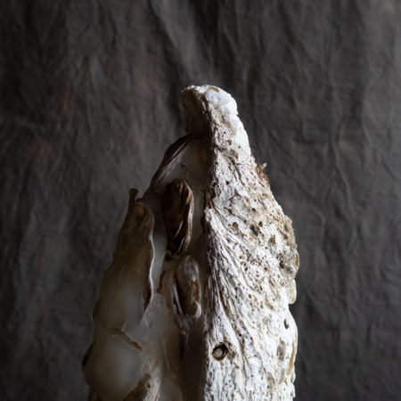 オートゥルノトゥルス|拾いものと真鍮