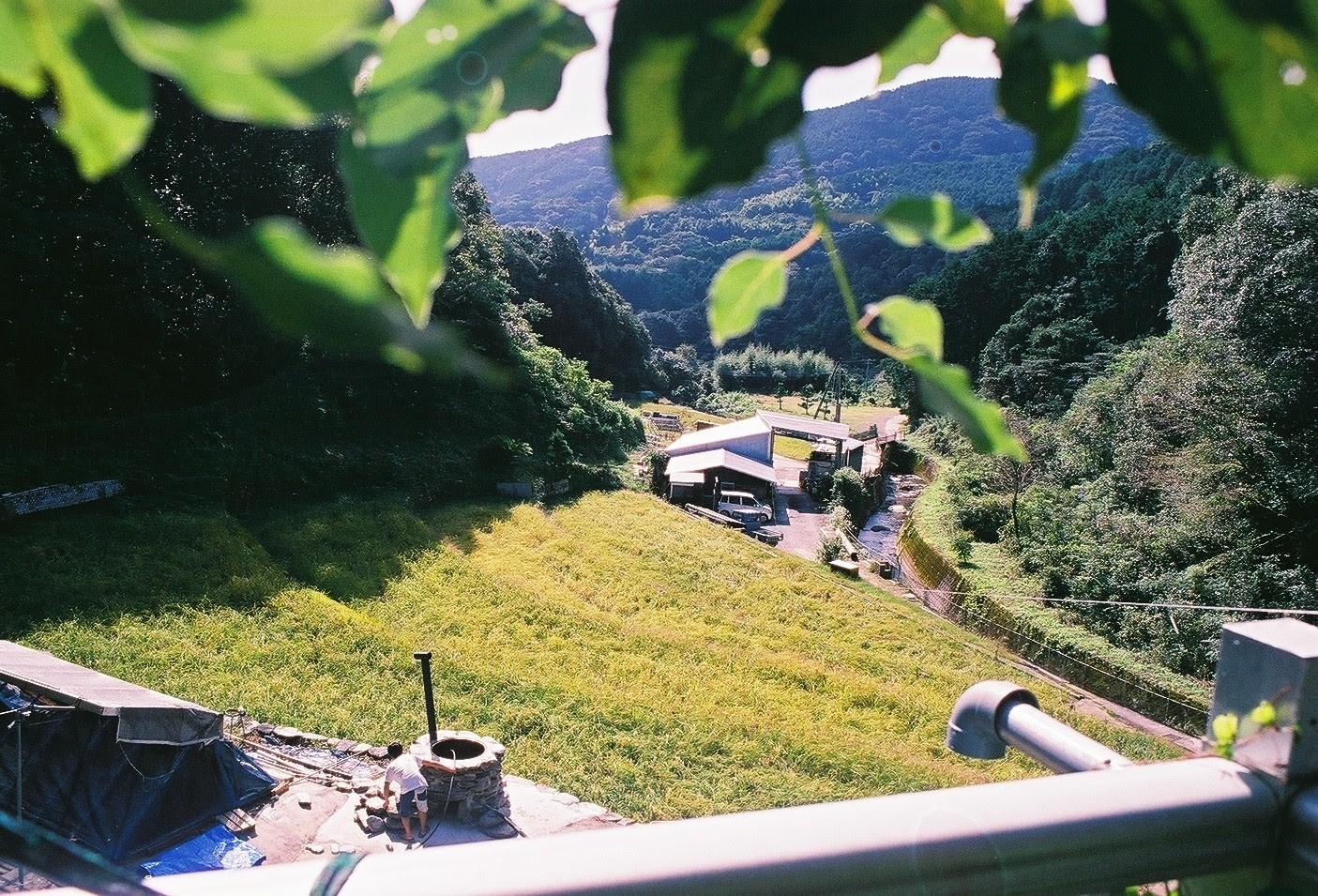 棚田を一望する風景