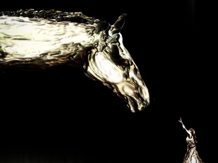 《Homichevalo》 12 min. 2008v