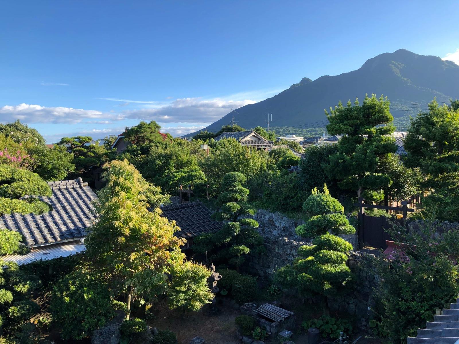 武家屋敷オフィスの2階から眺める景色