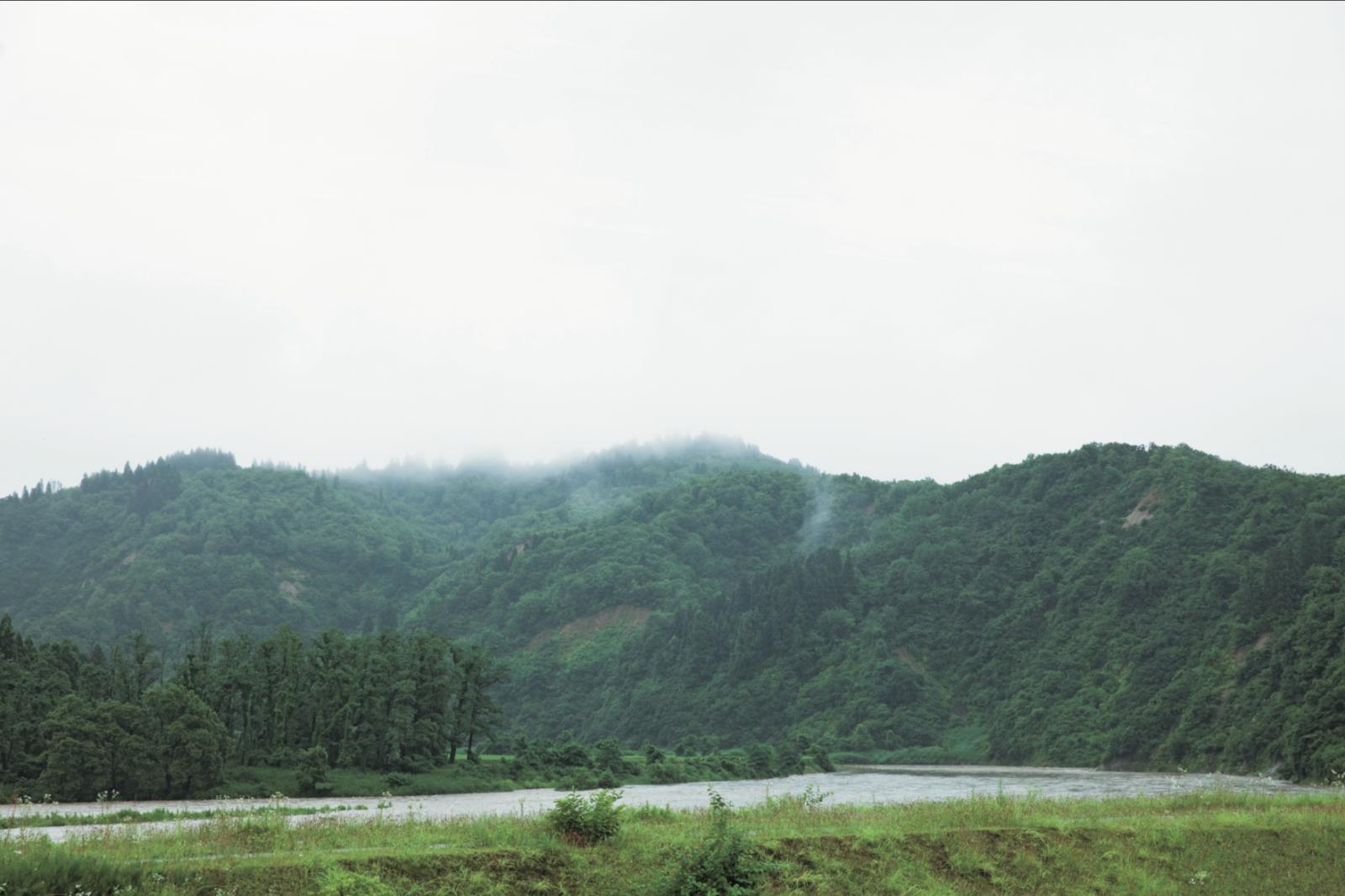 雨が降って水かさを増した魚野川。川岸にやな場がある。