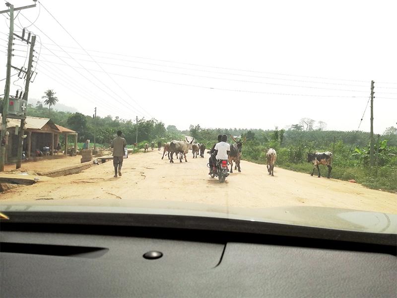 ケニアの首都・ナイロビ郊外。まだ舗装がされてない道路も多く、砂ぼこりが舞っていたのが印象的。