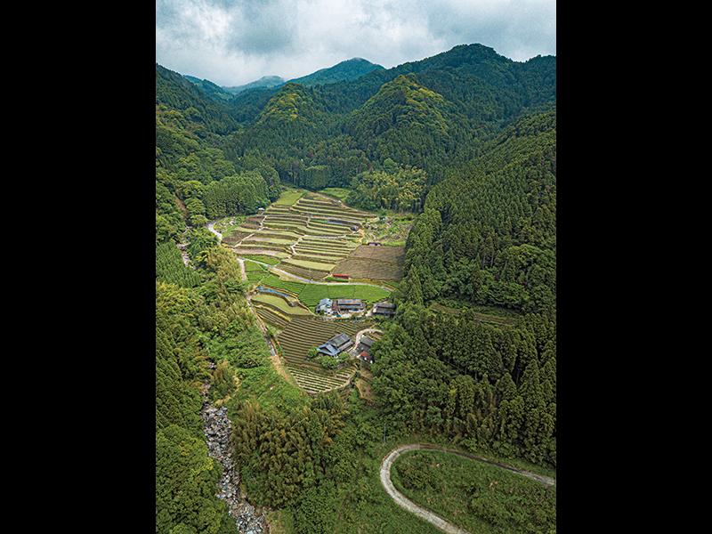 笠原集落の最奥、標高450メートルにある『天空の茶屋敷』。石積みの棚田とお茶畑に囲まれている。