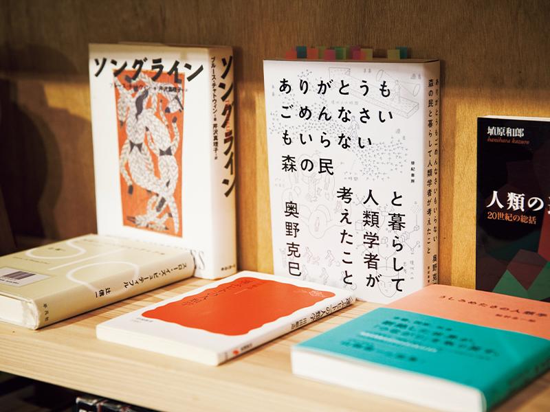 真兵さん、または海青子さんが仕入れた本が、来館者との出合いを待つかのように並べられている。