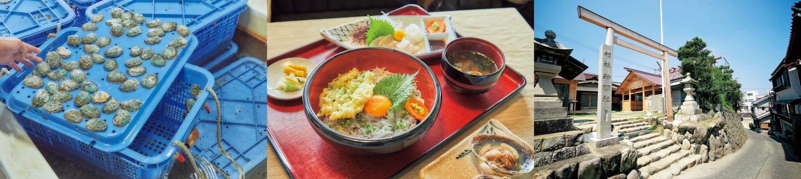 左/榊原さんと新美さんが養殖する鮑。出荷できるまで数年かかる。中/生、天ぷら、釜揚げなどのしらす料理が楽しめる。右/おんべ鯛づくりなどの神事を取り仕切る神明神社。