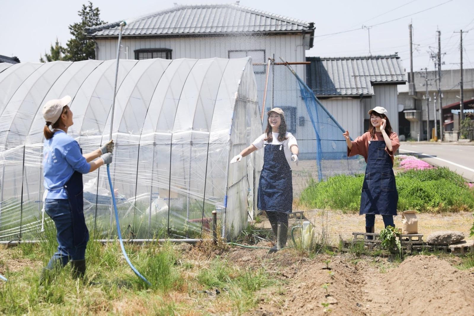 農業Crew_農作業