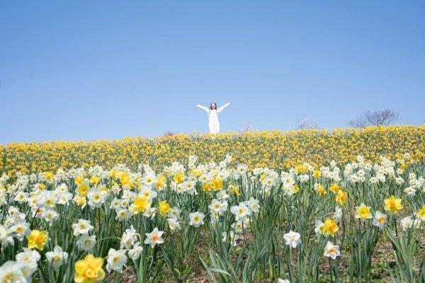 市川さんがおすすめする広島の観光スポット『国営備北丘陵公園』