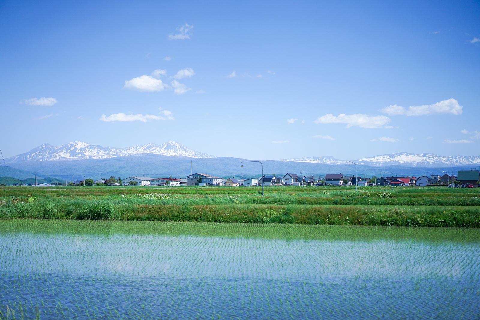 大雪山が蓄えた雪解け水による地下水で全世帯が生活をする。