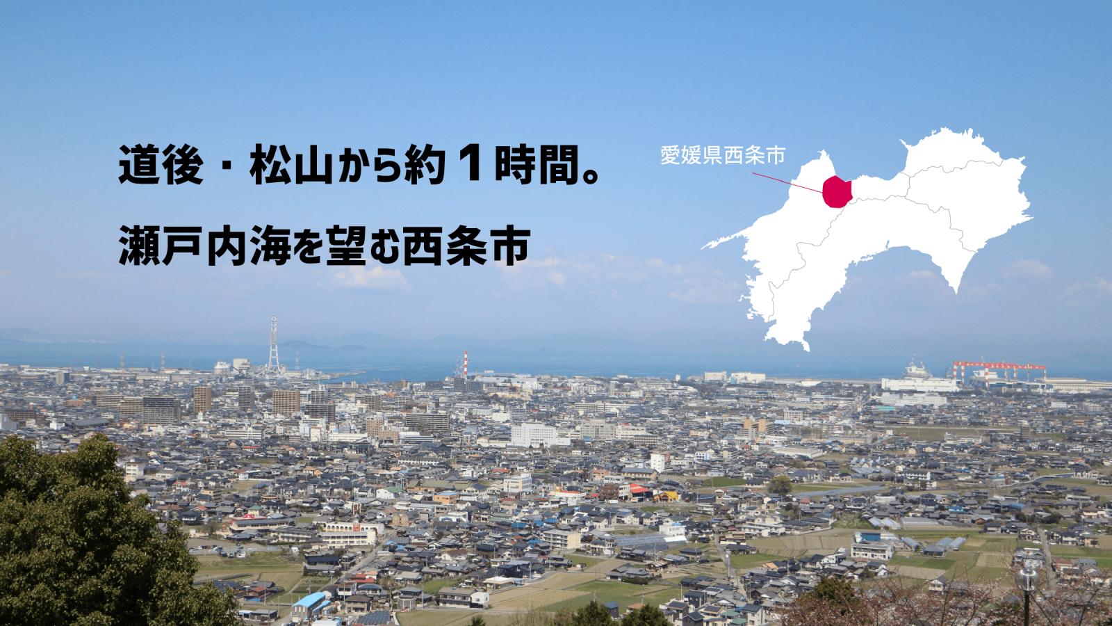 愛媛県西条市を一望した風景(【LOVE SAIJO】愛媛県西条市への移住・定住サポートサイトより)