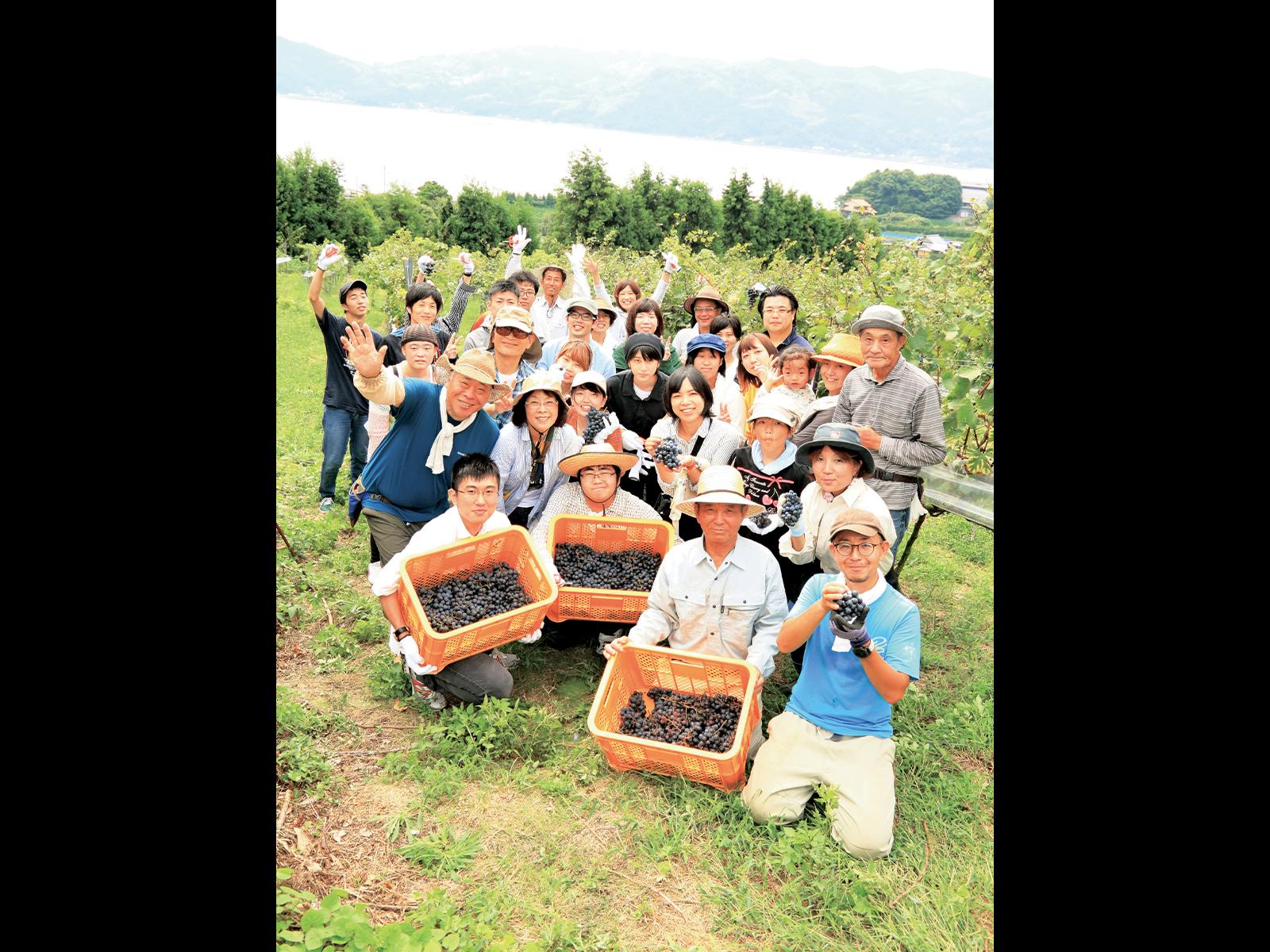『大三島みんなのワイナリー』では、シャルドネ、マスカット・ベーリーA、ヴィオニエ、メルロー、カヴェルネ・ソーヴィニヨンの5品種のブドウを栽培。収穫はすべて手作業。また、苗木オーナー制度などで、全国からワイナリーの支援者を募り、毎年9月に収穫祭を開催している。