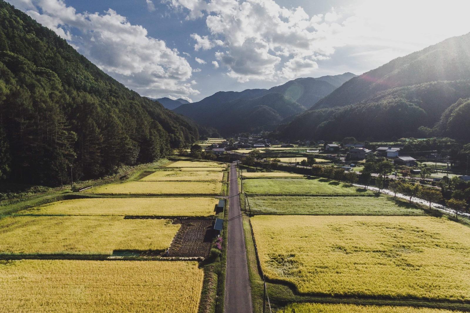 日本の原風景が残る辰野町の里山・川島エリア(写真提供:PINTO. 小口広希)