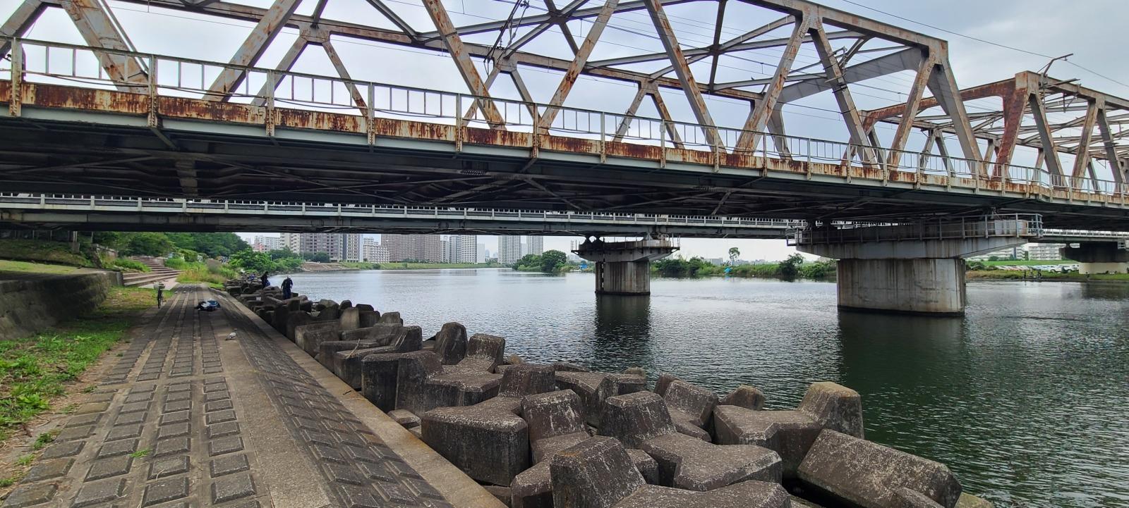 多摩川(神奈川県川崎市・六郷周辺)
