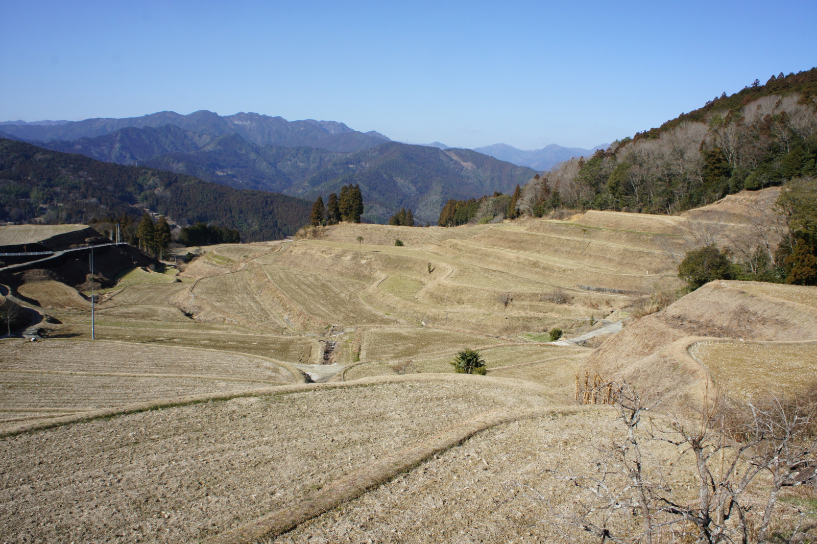 辺り一帯の斜面を埋め尽くす棚田の数々と、山深い土佐町の地形が独特の景観を作り出す