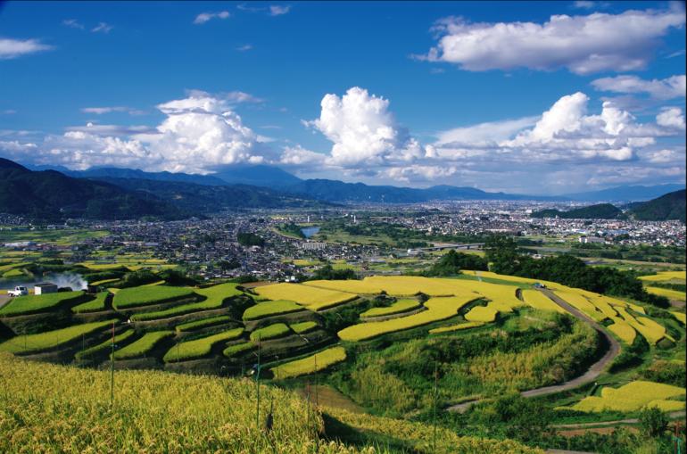 棚田からの善光寺平を見下ろす景色は絶景