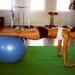 座るだけじゃない!バランスボールで効果的に腹筋を鍛える方法