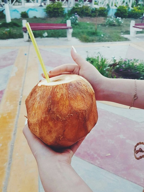Coconut power  by Nicole Johnsson   We Heart It (8056)