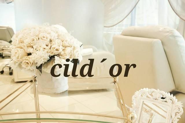 Cil d ' or(シルドール)[東京都/表参道]