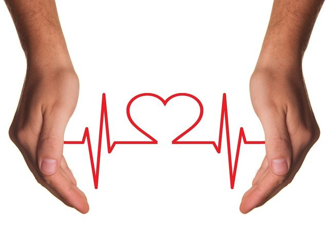 Free illustration: Heart Care, Medical, Care, Heart - Free Image on Pixabay - 1040227 (598)