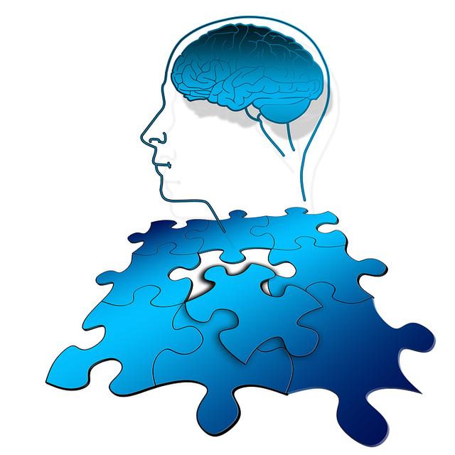 Free illustration: Puzzle, Share, Think, Brain - Free Image on Pixabay - 1746552 (1818)