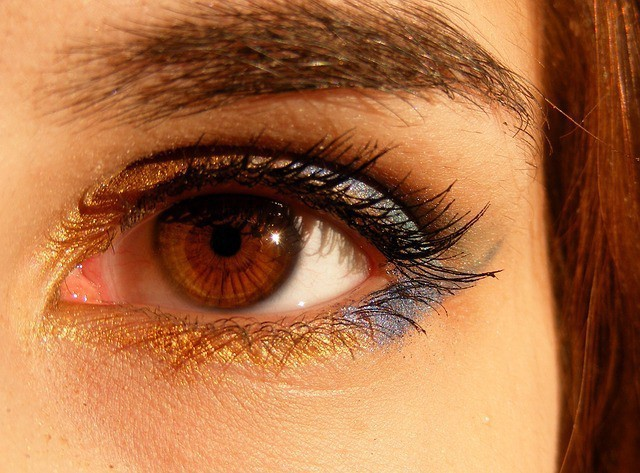 Free photo: Brown, Brown Eyes, Iris, Gene - Free Image on Pixabay - 518324 (5234)