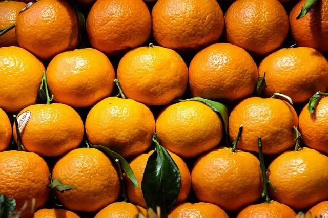 Free photo: Eat, Orange, Sweet, Mandarin - Free Image on Pixabay - 1901837 (5757)