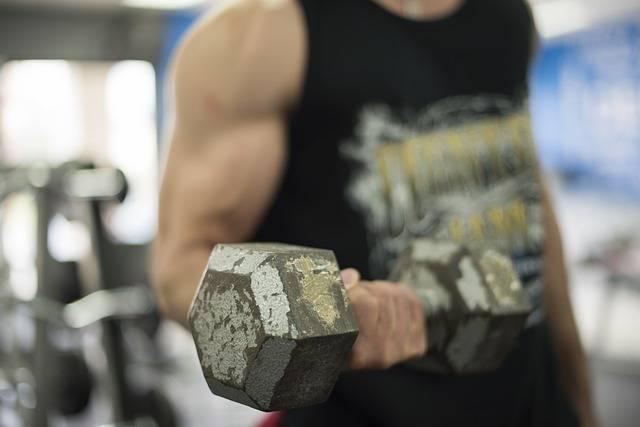 Free photo: Gym, Strong, Fitness, Athlete - Free Image on Pixabay - 1937829 (7297)