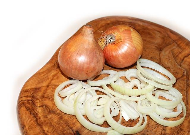 Free photo: Onion, Cutting Board, Food - Free Image on Pixabay - 657497 (7308)