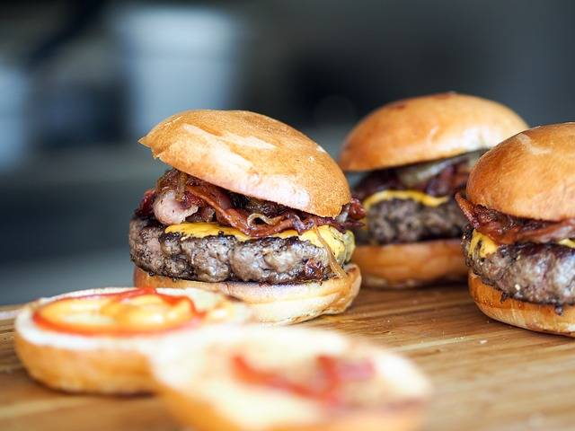 Free photo: Burger, Fast Food, Hamburger - Free Image on Pixabay - 731298 (7346)