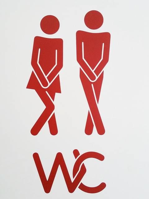 Free photo: Pair, Wc, Toilet, Man, Woman - Free Image on Pixabay - 624071 (7413)