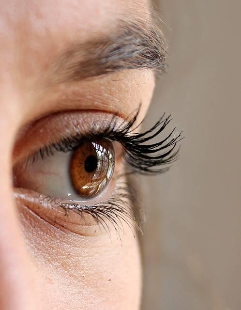 Free photo: Eye, Eyelashes, Face, Woman - Free Image on Pixabay - 211610 (7435)