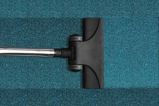 Free photo: Vacuum Cleaner, Vacuuming, Cleaning - Free Image on Pixabay - 268179 (7715)