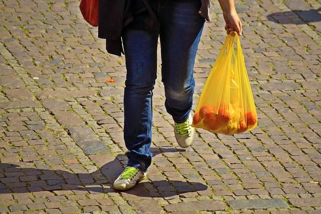 Free photo: Shopping, Care, Bear - Free Image on Pixabay - 874974 (7718)