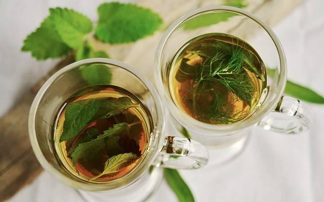 Free photo: Herbal Tea, Herbs, Tee, Mint, Sage - Free Image on Pixabay - 1410565 (7861)