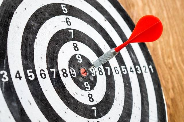 Free photo: Target, Goal, Success, Dart Board - Free Image on Pixabay - 1955257 (7904)