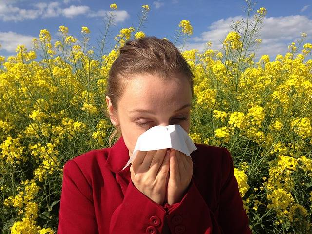Free photo: Allergy, Medical, Allergic - Free Image on Pixabay - 1738191 (8747)