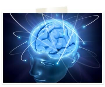 最新の脳科学に基づく英語脳プログラム|ブレインスピーキング (603)