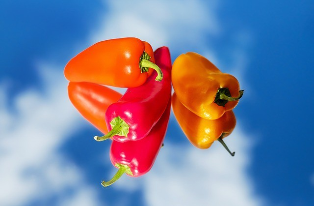 Free photo: Paprika, Vegetables, Red, Yellow - Free Image on Pixabay - 1589670 (664)