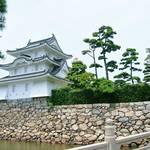 【タイが泳ぐ「縁起の良い」お城?】すぐそこに海が感じられる高松城(香川県)