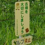 国史跡埼玉(さきたま)古墳群とさきたま火祭り