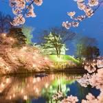【 春の最強コンビ 】全国より厳選!桜がきれいな城10選