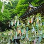 【5月27日は百人一首の日】平安一のモテ女子・和泉式部が復縁を願った!?京都・貴船神社