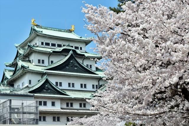 名古屋城(愛知県名古屋市)