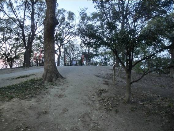 茶臼山の途中から山頂を見た光景
