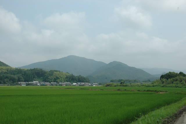 小谷城の遠景