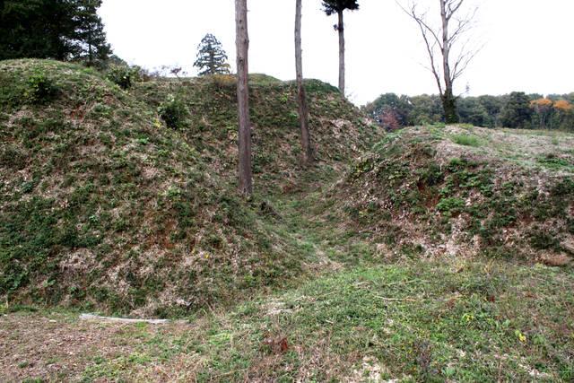 杉山城の起伏に富んだ縄張り
