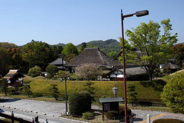 写真提供:みのうち社 (13971)
