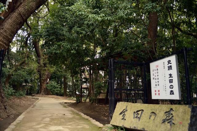 生田の森(兵庫県神戸市)