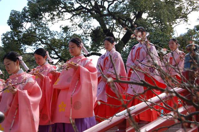 写真提供:福岡市 (14854)