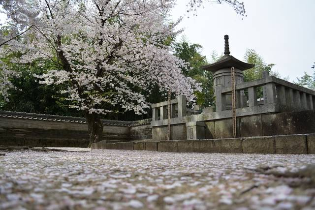 大樹寺にある徳川家康の霊廟
