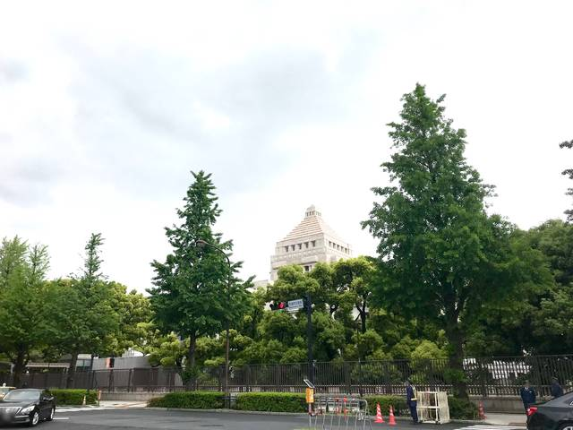 国会議事堂の裏通り(国道246号線)